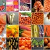 FRUIT & VEG | Cut the Risk of Stroke